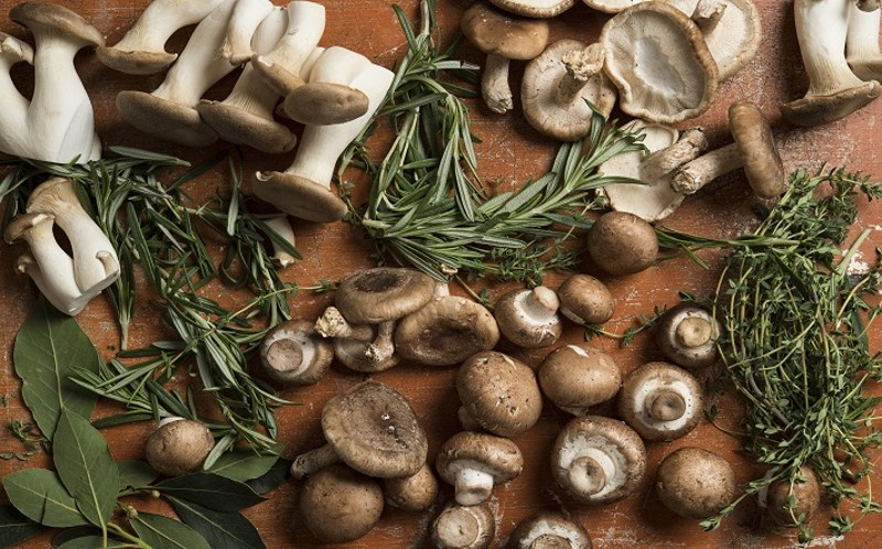 Mushrooms are a Powerhouse of Nutrition